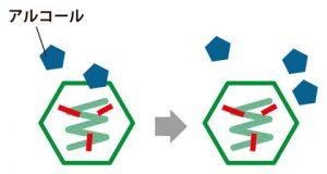 ノンエンベロープウイルス:膜がなく、アルコールに強い。ただし、酸性のアルコール消毒剤には弱いとされている