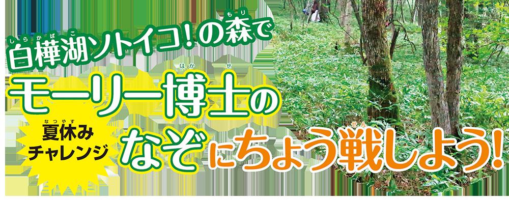 夏休みチャレンジ! 白樺湖ソトイコ!の森でモーリー博士のなぞに挑戦しよう!
